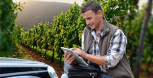 Software Verticale per Cantine e aziende vinicole