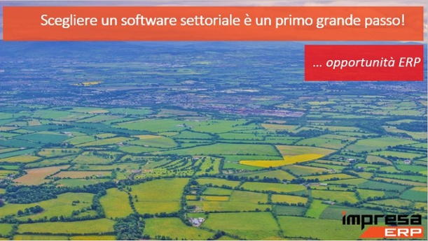 software settoriale